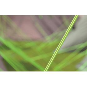 Outwell Vigor 5 Telt grøn